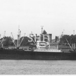 ALAMEDA 1944 Victory type.Matson, Sydney Cove. SHF Coll.