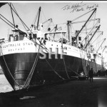 AUSTRALIA STAR 1935-1964. in Sydney Aug. 1956. SHF Coll.