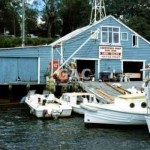 Abbottsford Boatshed, Mar 2001. File 1359-23