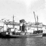 BERMAGUI in 3 Sydney Cove,Aug. 1955.File 3.