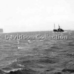 BIRCHGROVE PARK, into a gale, Nov 28, 1951. Davidson File 60