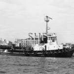BOTANY COVE 1971, renamed WOOREE 1997 at Newcastle. SHF Coll