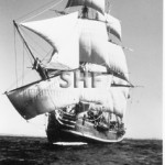 BOUNTY replica, 1960.PR photo.SHF Coll.