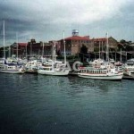 Birkenhead marina,with WEST HEAD. 1990. File 1061-27.