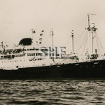 CALEDONIEN 1952-1975. Real photo post card. SHF Coll.