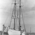 DERWENT HUNTER, 1946,on Palm Beach Slipway, SHF Coll.
