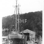 DERWENT HUNTER 1946,on Palm Beach Slipway. SHF Coll.