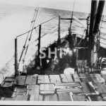ERRINGHI 1907-1951 at sea with stores & cattle. SHF Coll.