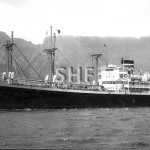 FREMANTLE STAR 1944,later CATALINA STAR. SHF Coll.