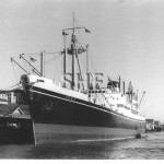 ICENIC 1960. Dalgettys, Millers Pt. SHF Coll.