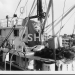 KAPALA 1970 NSW Fishery Research,detail pix in folder. SHF C