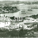Lavender Bay, Holterman, c. 1880. SHF Coll.