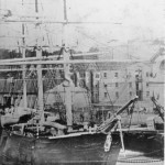 MAID OF JUDAH, Sydney Cove. c.1860s. SHF Coll.