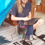 Orion preparing for caulking - see specialist tools
