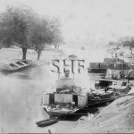 Paddle steamers including RODNEY at Bourke before 1894. SHF