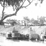 RODNEY PS and LADY OF THE LAKE PS at Bourke between 1880-189