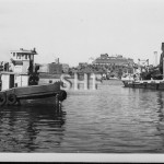 SYDPORT 1960 and VAN 1939 at H and L yard Rozelle Bay. SHF C