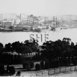Sydney Cove western shore c. 1860s. SHF Coll.