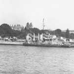 WARRAMUNGA HMAS, 1942-1963, Farm Cove Jan 16, 1946. SHF Coll