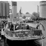WATTLE, Blackwattle Bay, 1979. proof 503-12.