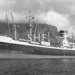 WELLINGTON STAR 1952,at Cape Town. SHF Coll.