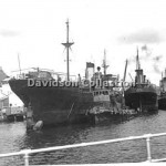 WONGA and ALDINGA, DILGA NOORA,Sep 25,1951.Davidson SHF,File 41