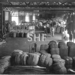 Wharfies handling wool bales in wharf shed. c.1940s. SHF Col