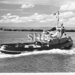 YORK SYME 1961-sold 1996. SHF Coll.