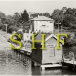 004 Wharves - Alexandra St,  Lane Cove River, Nov.1951